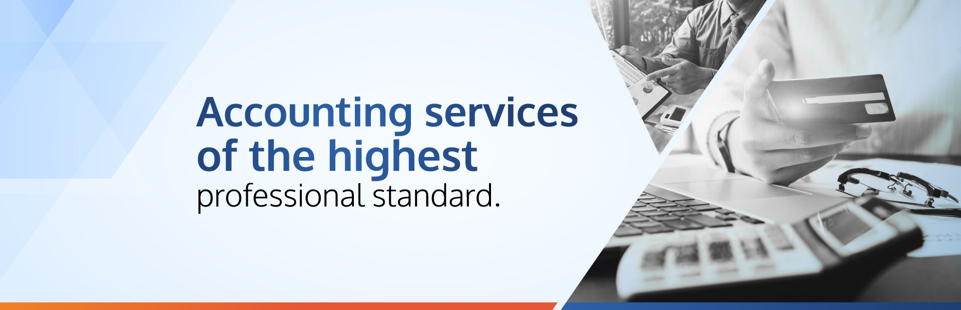 Professional VAT Services Dubai